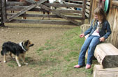 Our kid friendly dude ranch includes dogs to play with