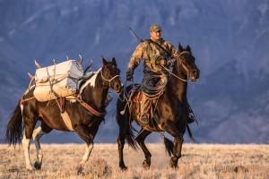 Stoecklein ramure d'image sur un cheval de bât